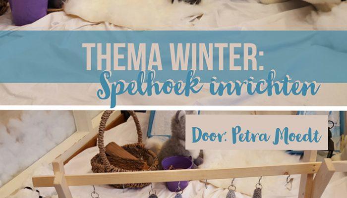 Thema winter: spelhoek inrichten – door Petra Moedt