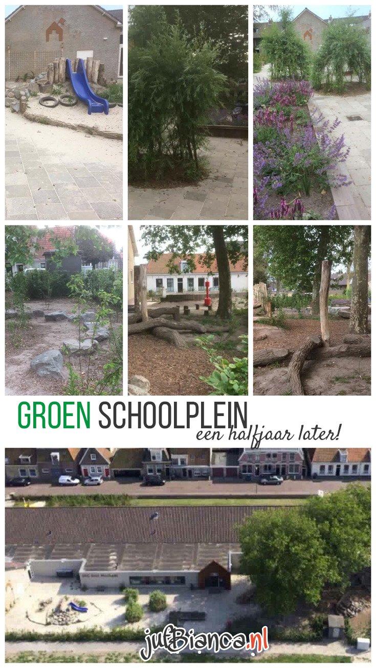 Een groen schoolplein - een halfjaar later - Juf Bianca